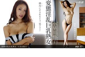 小早川怜子 変態淫乱巨乳熟女 動画書き起こし・レビューを読む