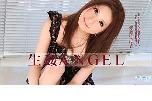 愛原つばさ 生姦Angel 後編 動画書き起こし・レビューを読む