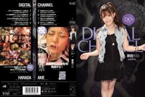原田明絵 DIGITAL CHANNEL DC85 動画書き起こし・レビューを読む